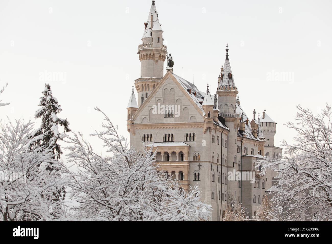 Neuschwanstein Castle in winter landscape - Stock Image