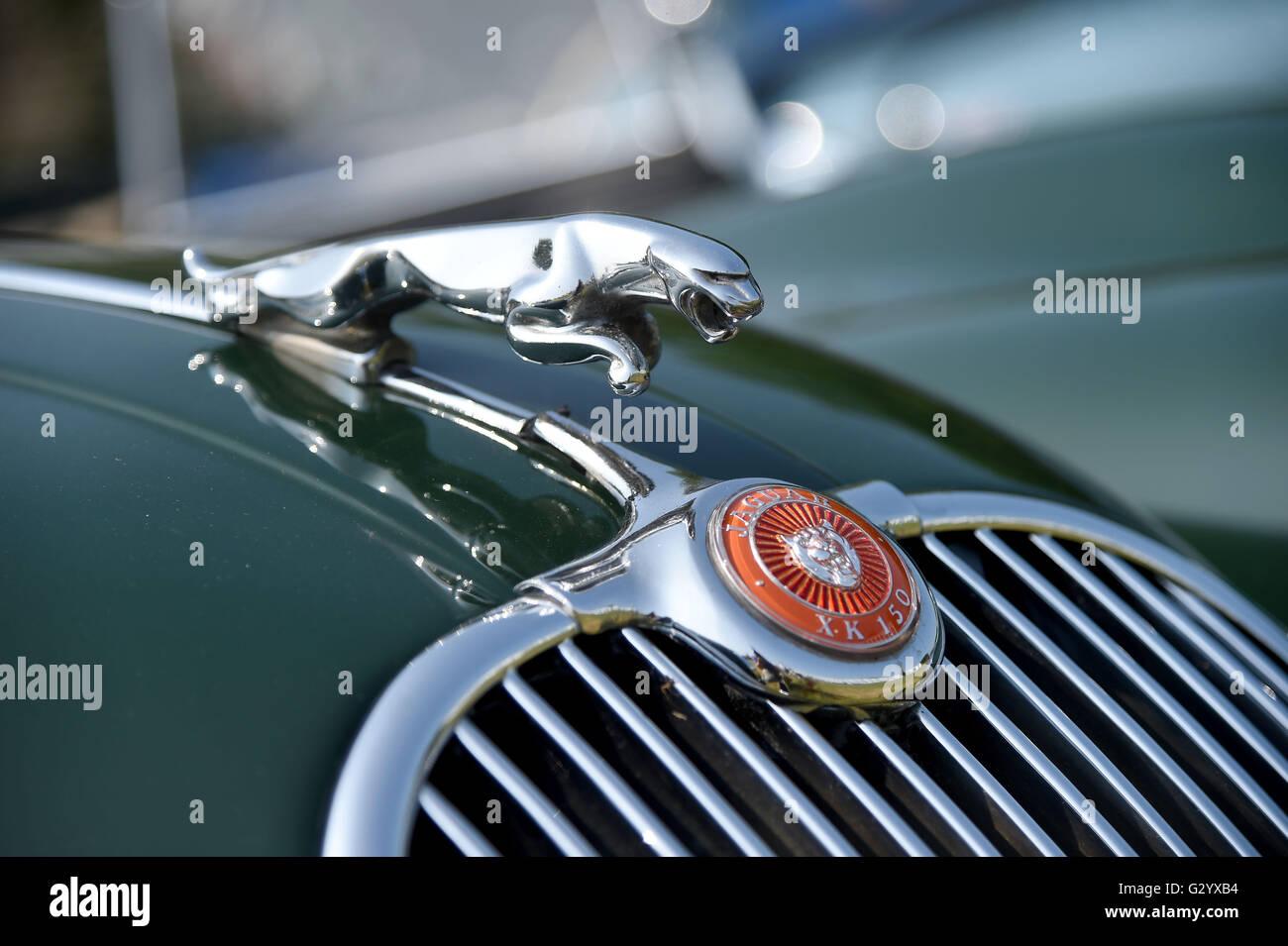 Weymouth, Dorset, UK. 05th June, 2016. Jaguar XK 150 hood ornament ...