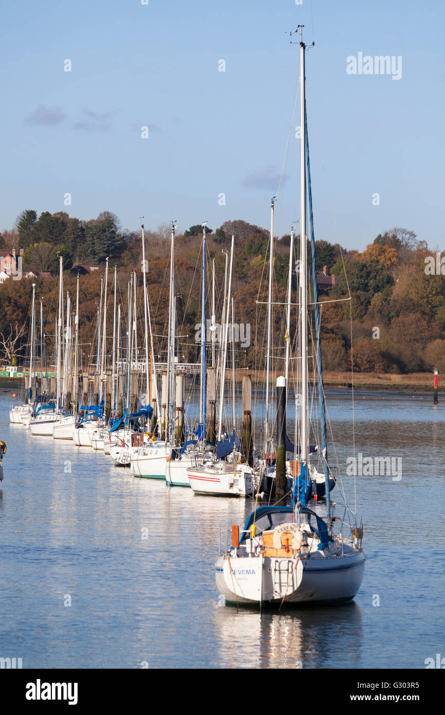 Yachts moored in a neat row on the River Hamble estuary, England, United Kingdom, Europe - Stock Image