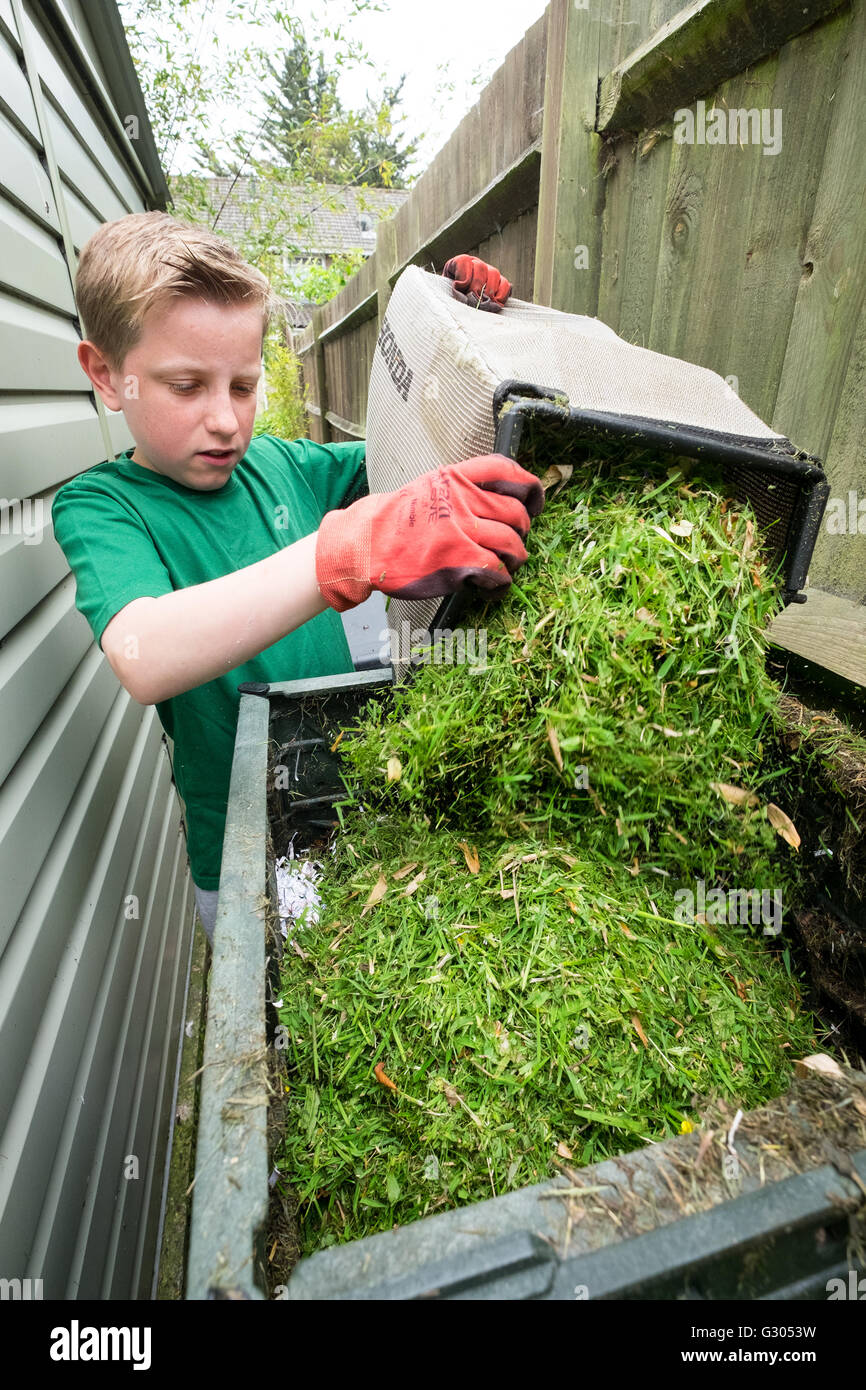 A boy adding grass cuttings to a compost bin - Stock Image