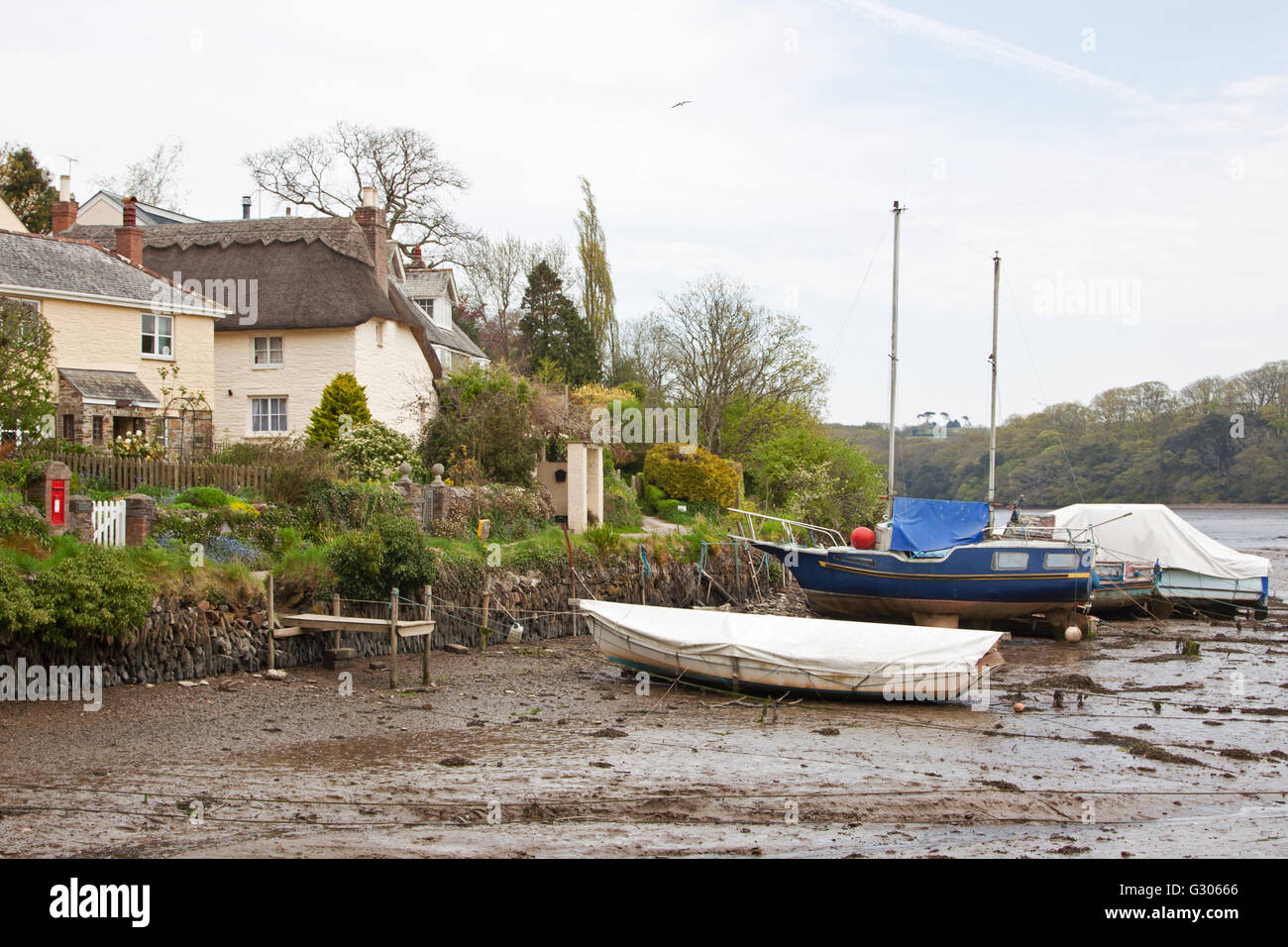 The small natural harbour at St Clement village in Cornwall at low tide on the Tresillian river Stock Photo