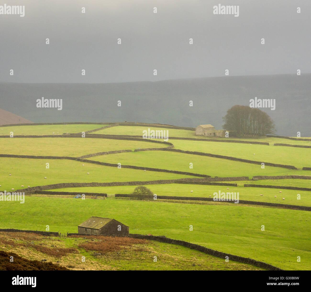 Mist above Bolton Abbey, Yorkshire Dales, Yorkshire, England, United Kingdom, Europe - Stock Image