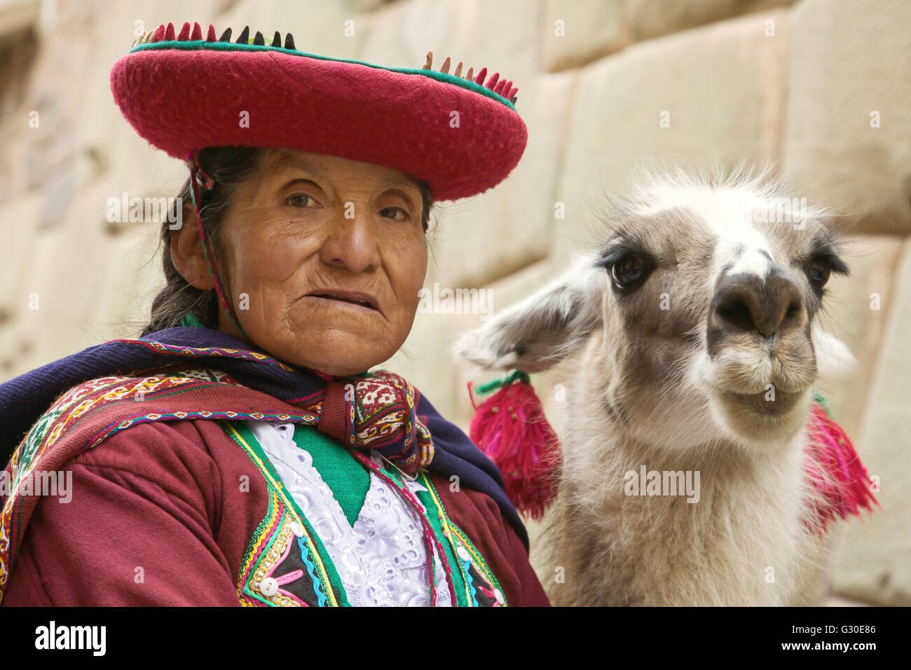 Portrait of old peruvian quechua woman in traditional clothes with llama in Cusco - Stock Image