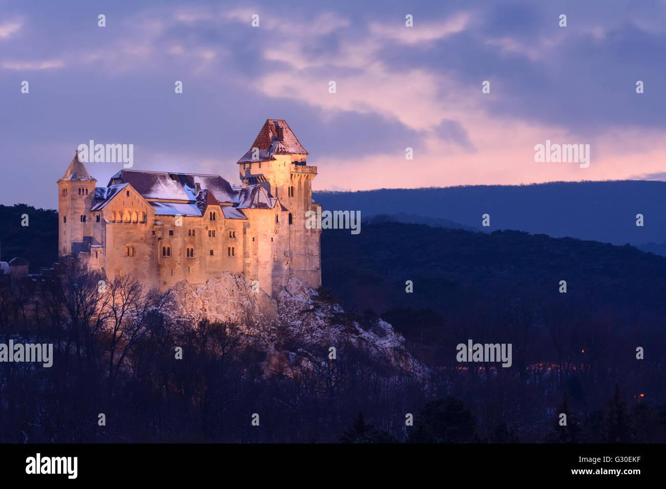 Liechtenstein castle and vineyards, Austria, Niederösterreich, Lower Austria Wienerwald, Maria Enzersdorf Stock Photo