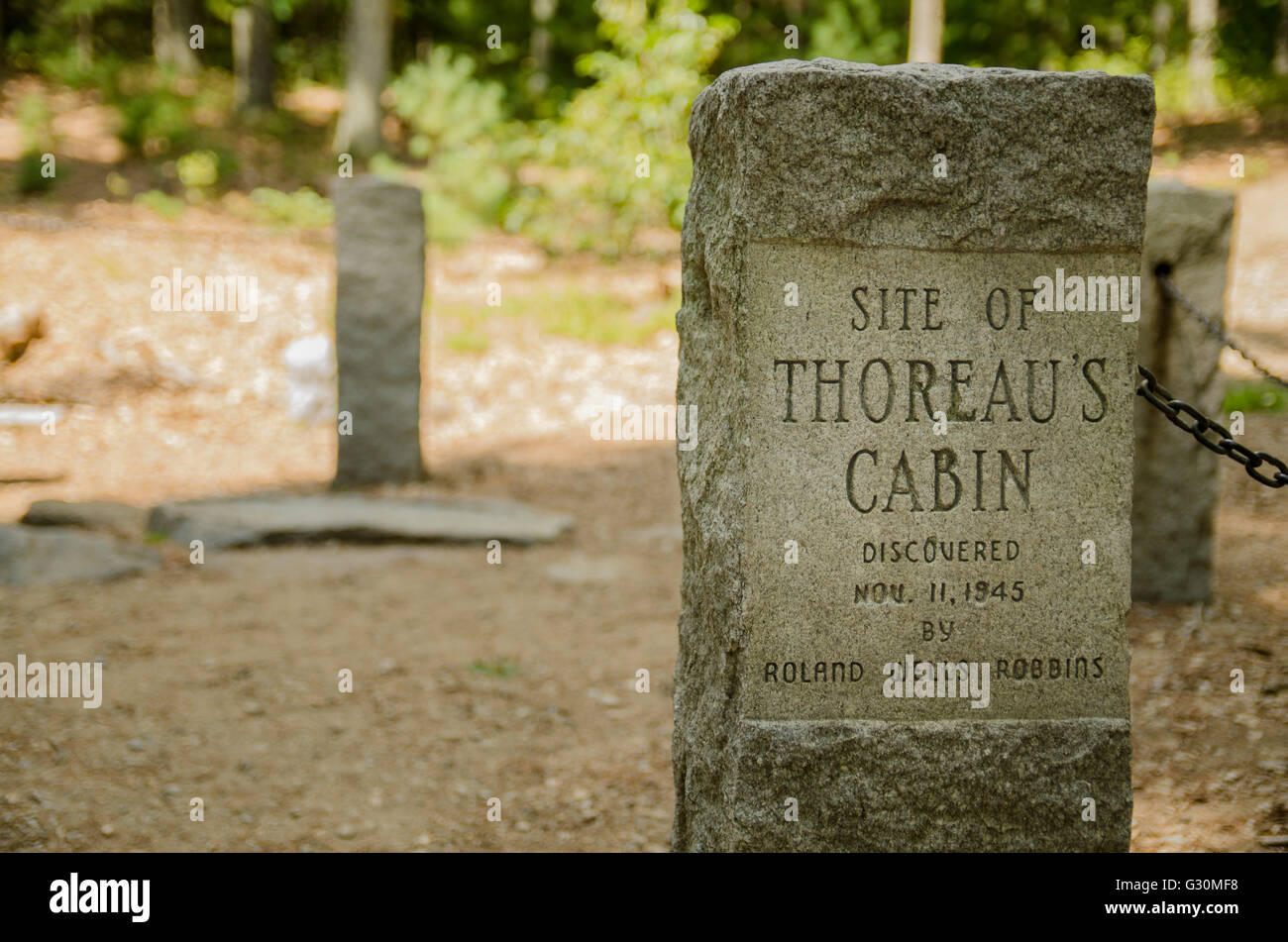 Memorial Stone At The Site Of A Cabin Of Henry David Thoreau