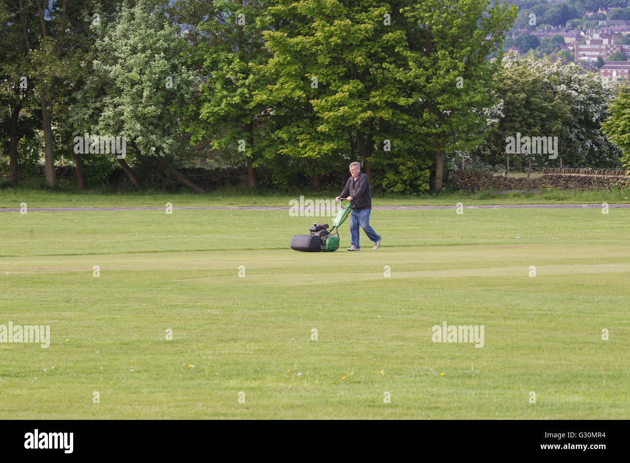 Groundsman mowing cricket square on village cricket pitch - Stock Image
