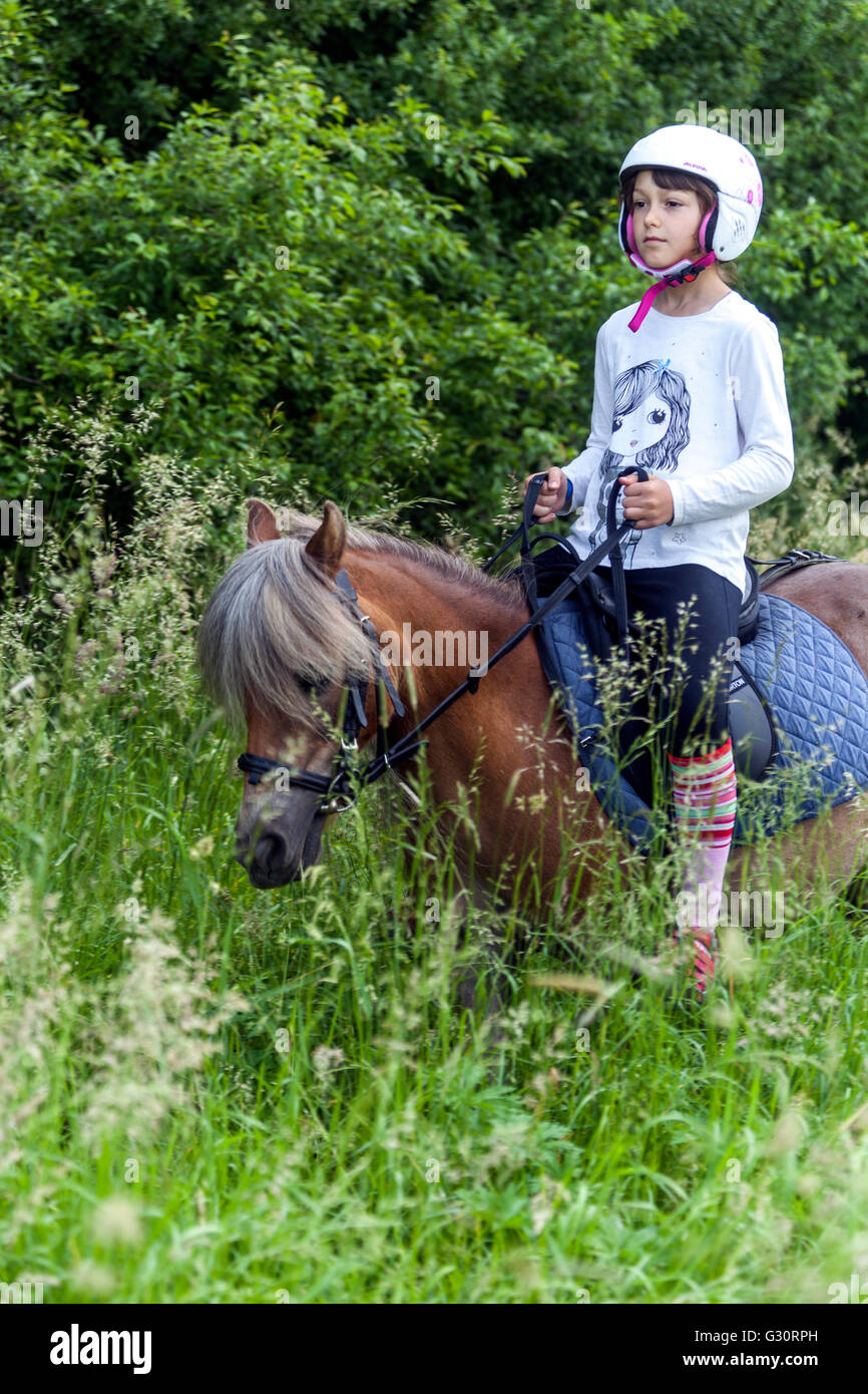 Horseback riding summer landscape Young girl with  a pony on a meadow - Stock Image