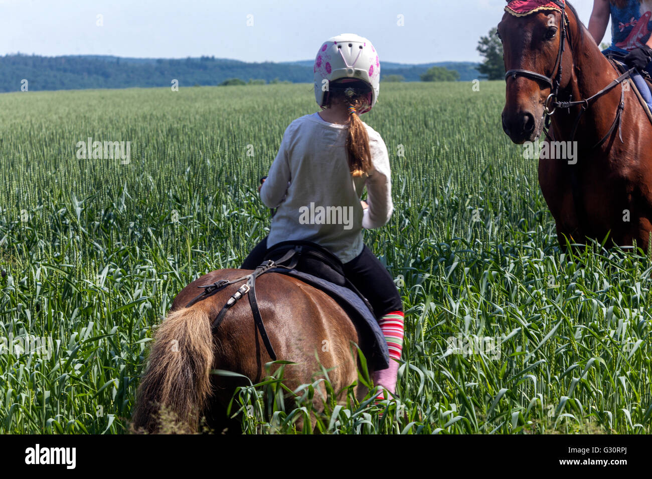 Horseback riding summer landscape Young girls with horses on a meadow - Stock Image