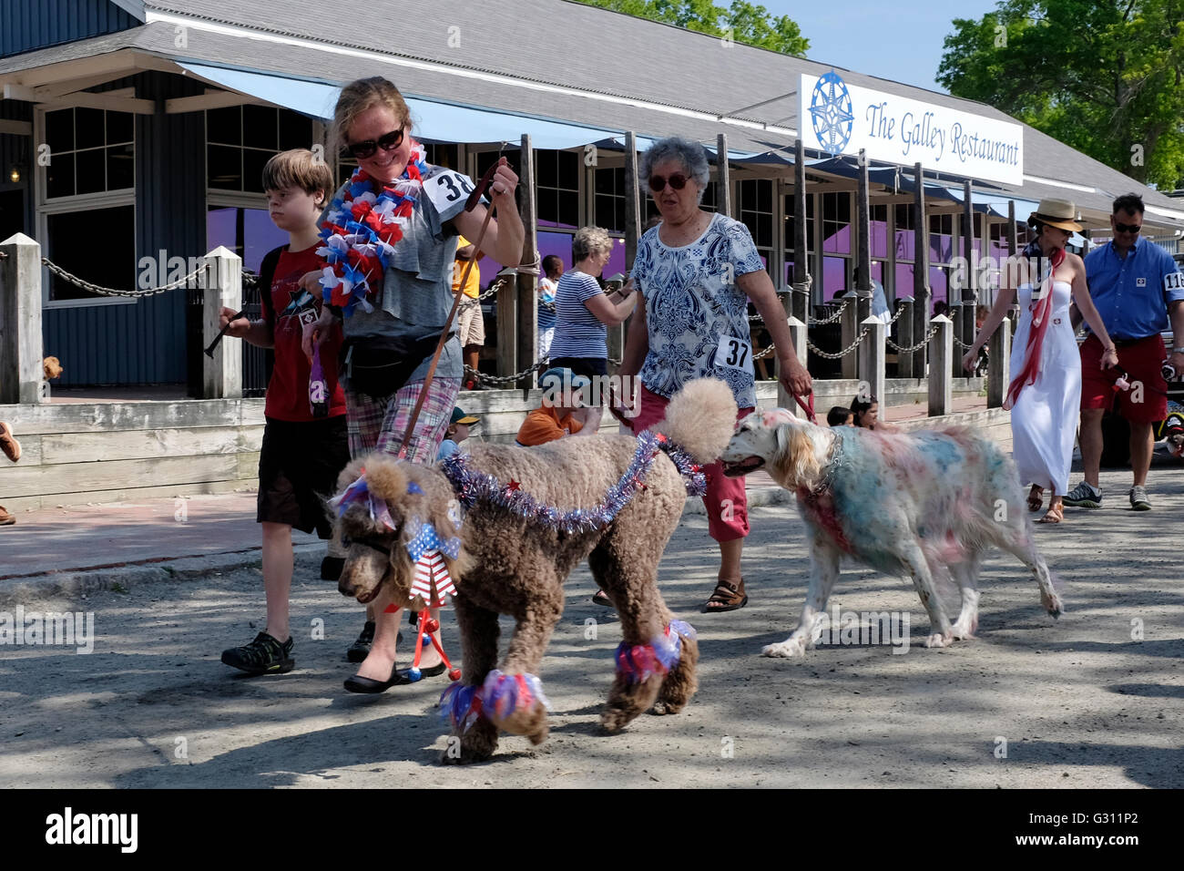 Participants in Costumed Dog Parade in Mystic Seaport, Connecticut - Stock Image