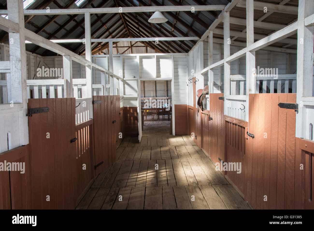 Interior of Stables at Saumarez Homestead, a National Trust property at Armidale NSW Australia - Stock Image