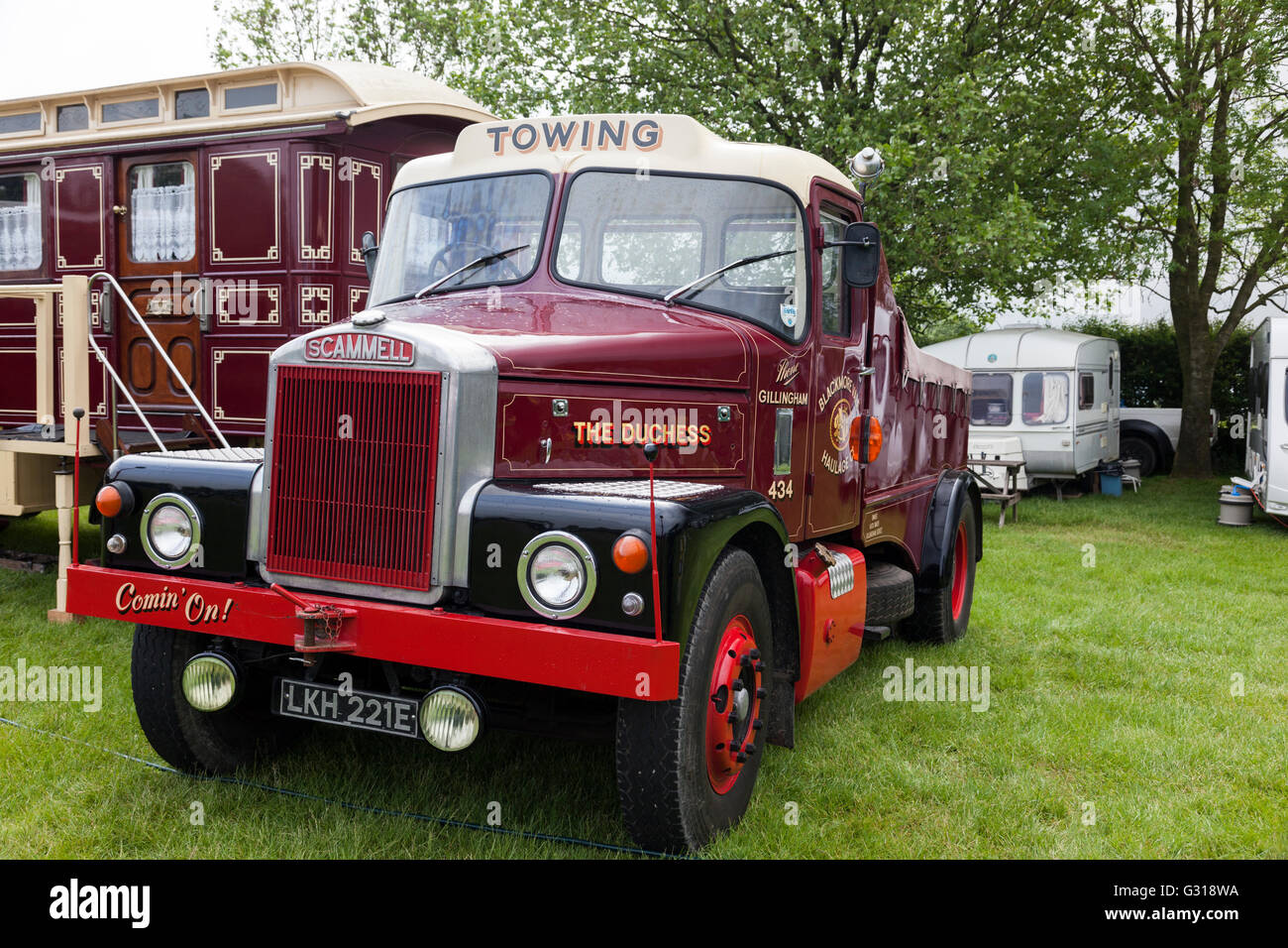 The Duchess Scammell - LKH 221E. - Stock Image