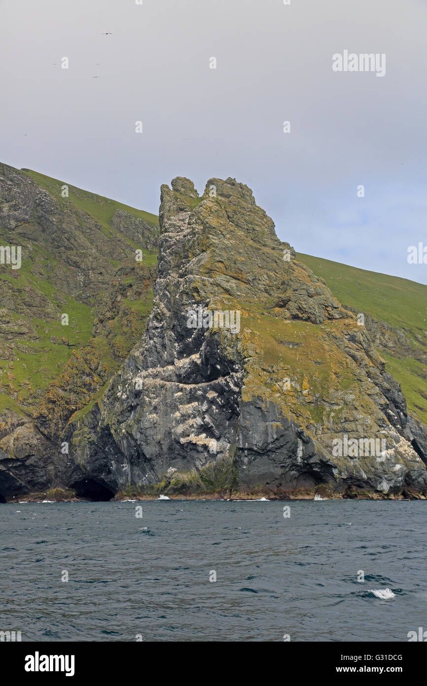 Boreray cliffs showing gannet colonies - Stock Image