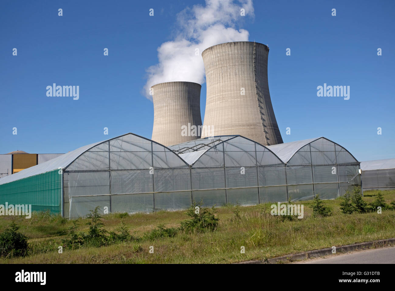 Greenhouse growing plants near cooling towers EDF nuclear power plant Dampierre-en-Burly France - Stock Image