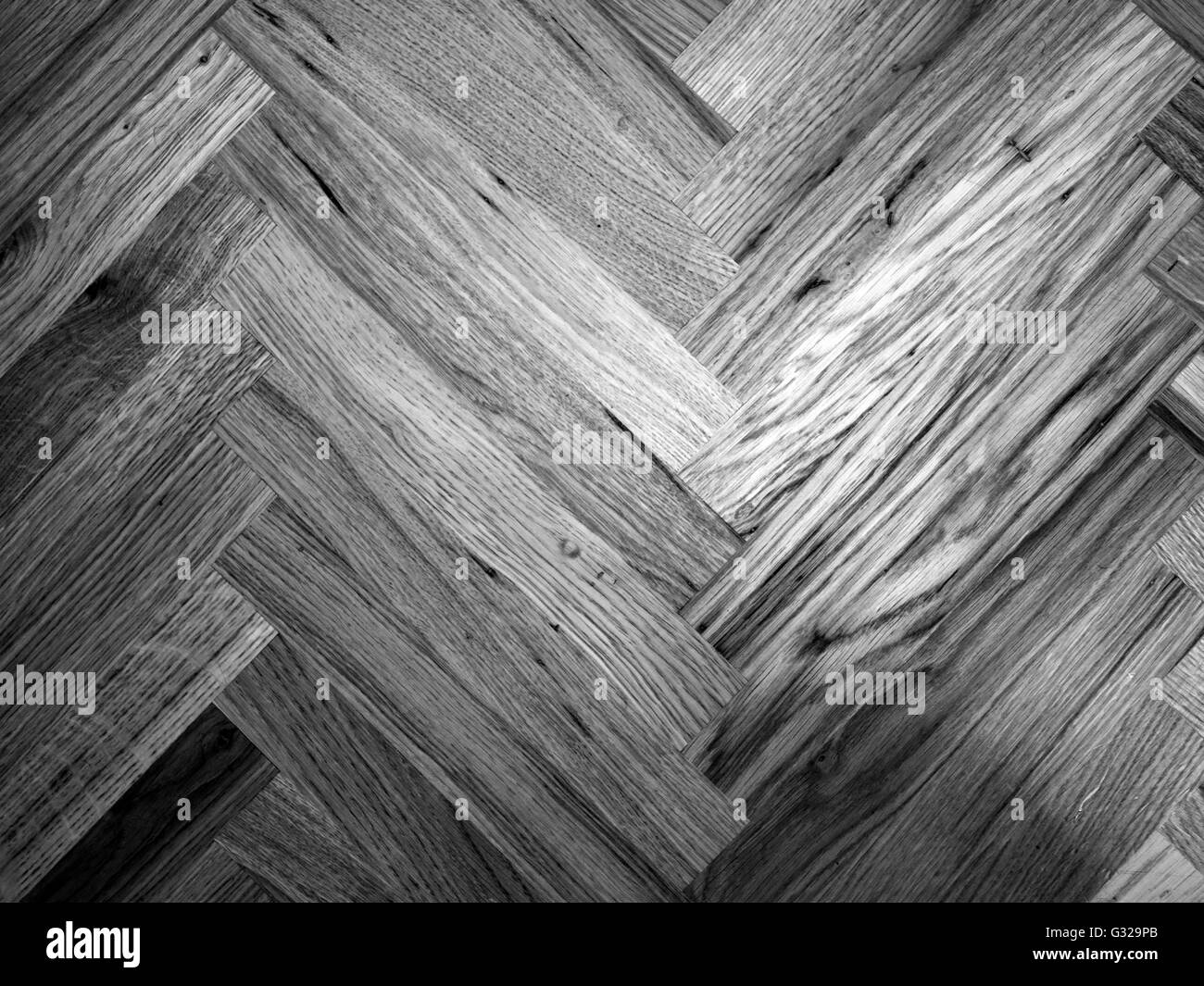 Seamless Oak laminate parquet floor texture background in black and white - Stock Image