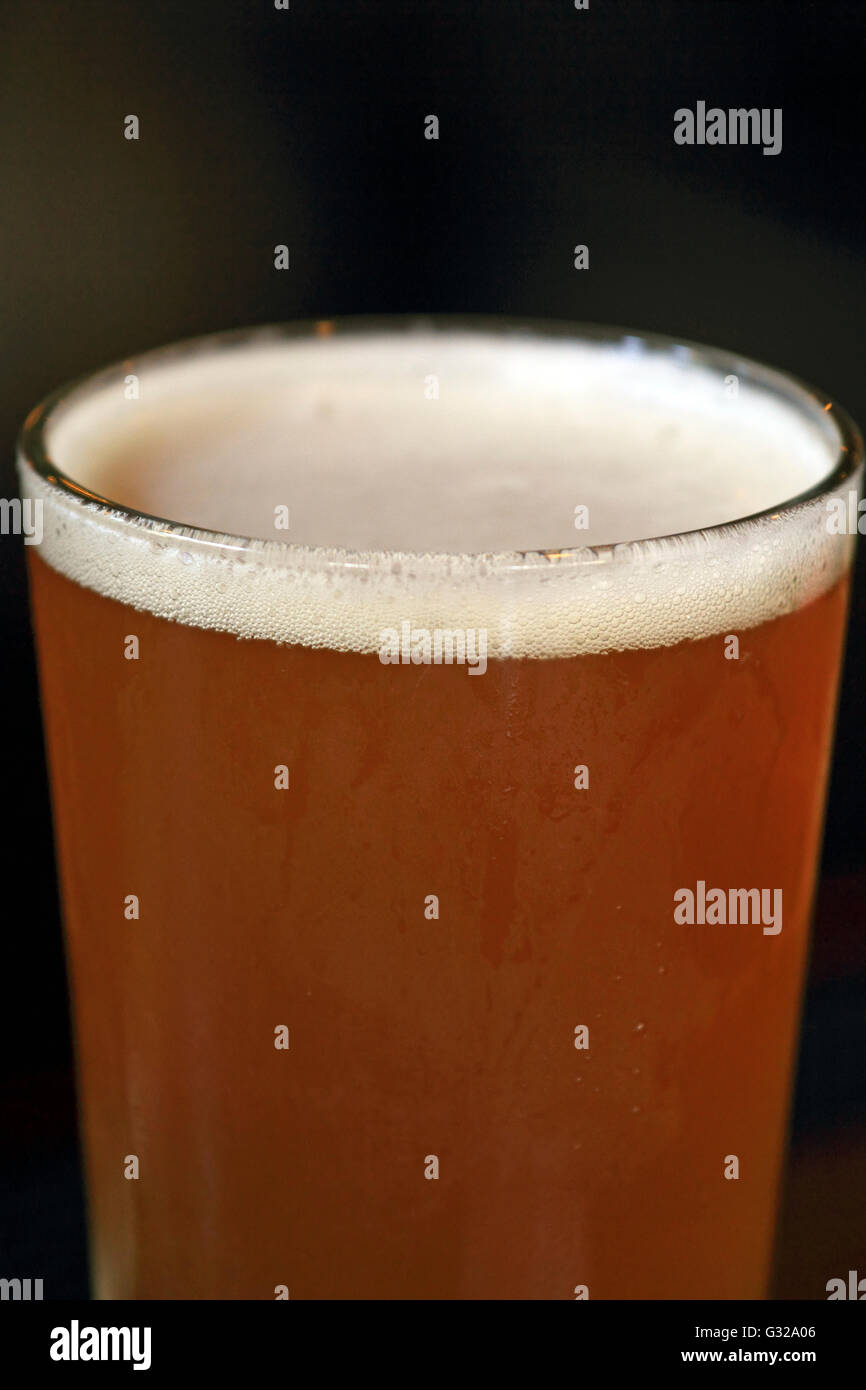 Cape May Brewing Company IPA beer. Cape May, New Jersey, USA - Stock Image