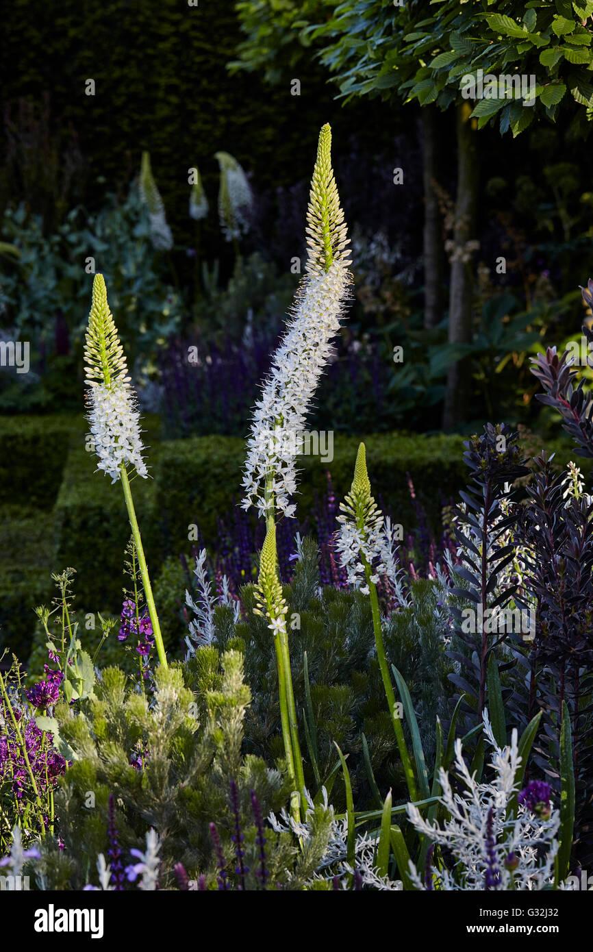 Chelsea Flower Show 2016 Designer Gardens Charlie Allbone Husqvarna Garden - Stock Image
