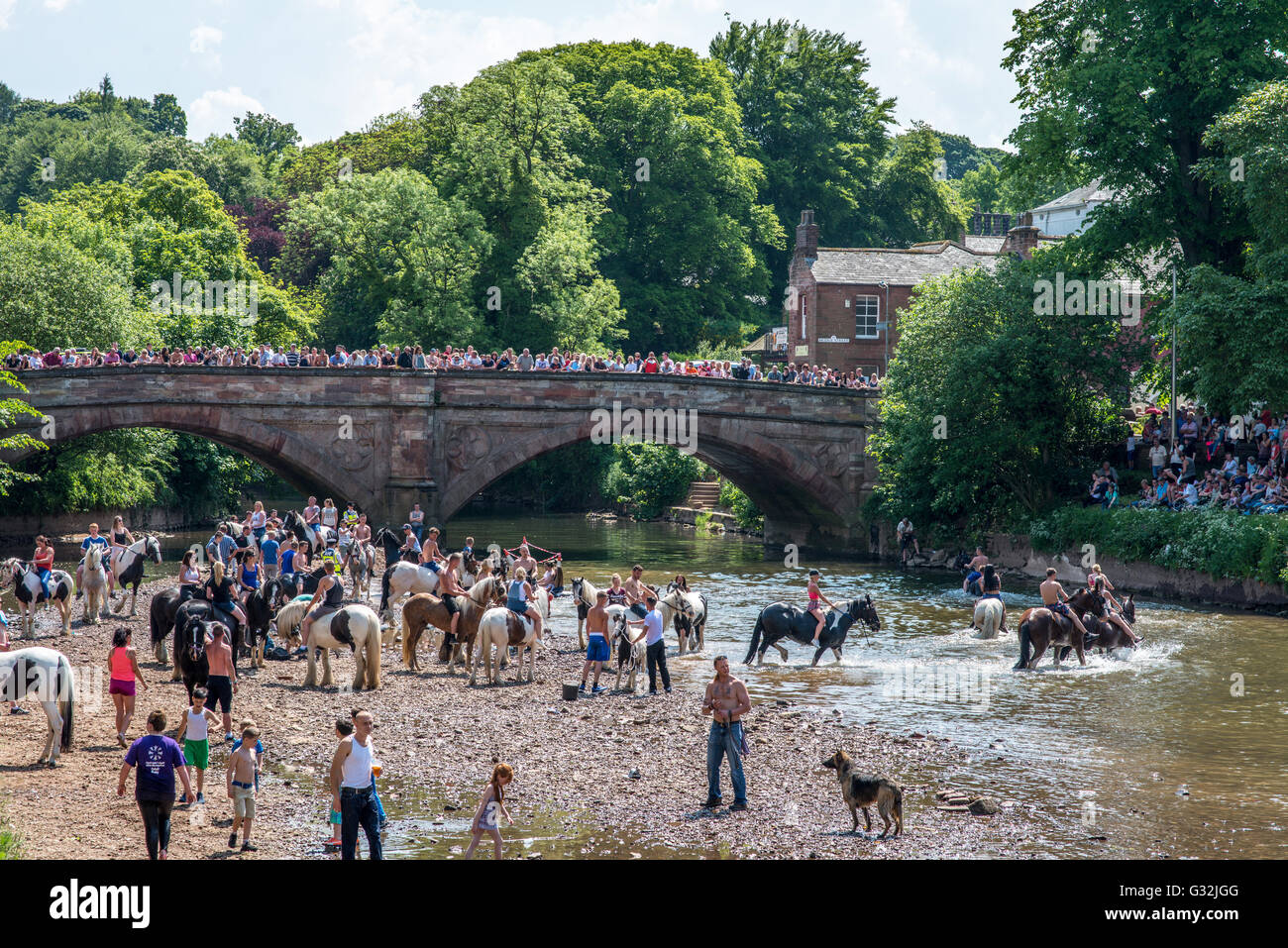 Appleby In Westmorland Cumbria UK Crowds Gather To Watch The Traditional Washing Of Horses River Eden At Horse