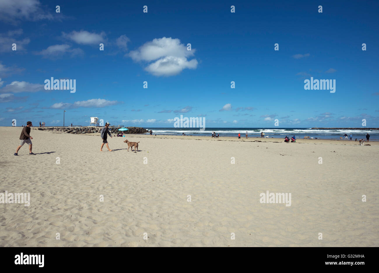 People and dogs at Dog Beach at Ocean Beach. San Diego, California. - Stock Image