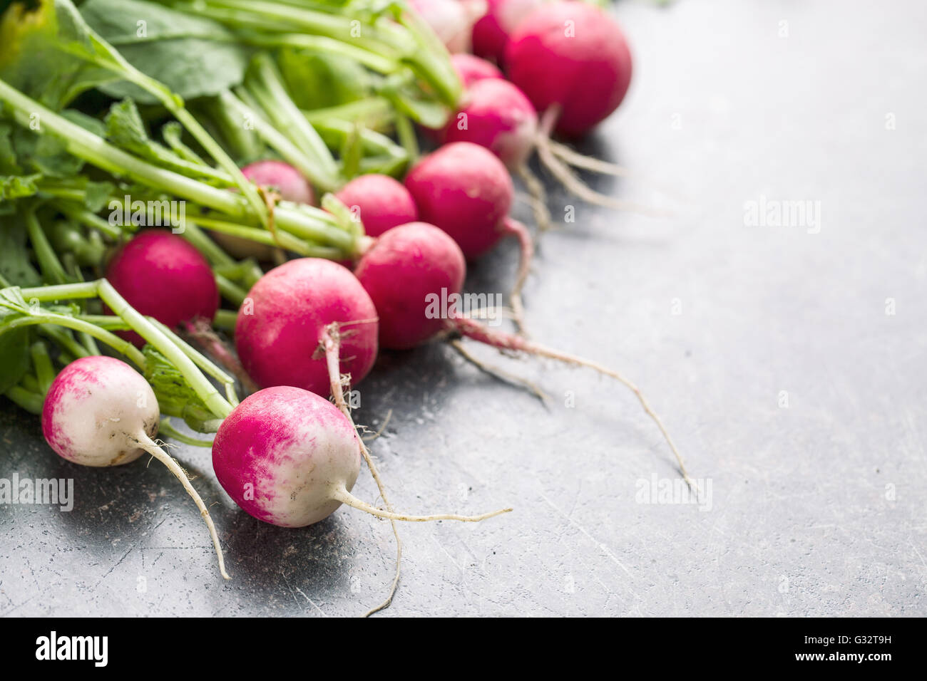 Fresh radishes on old kitchen table. Healthy vegetable. - Stock Image