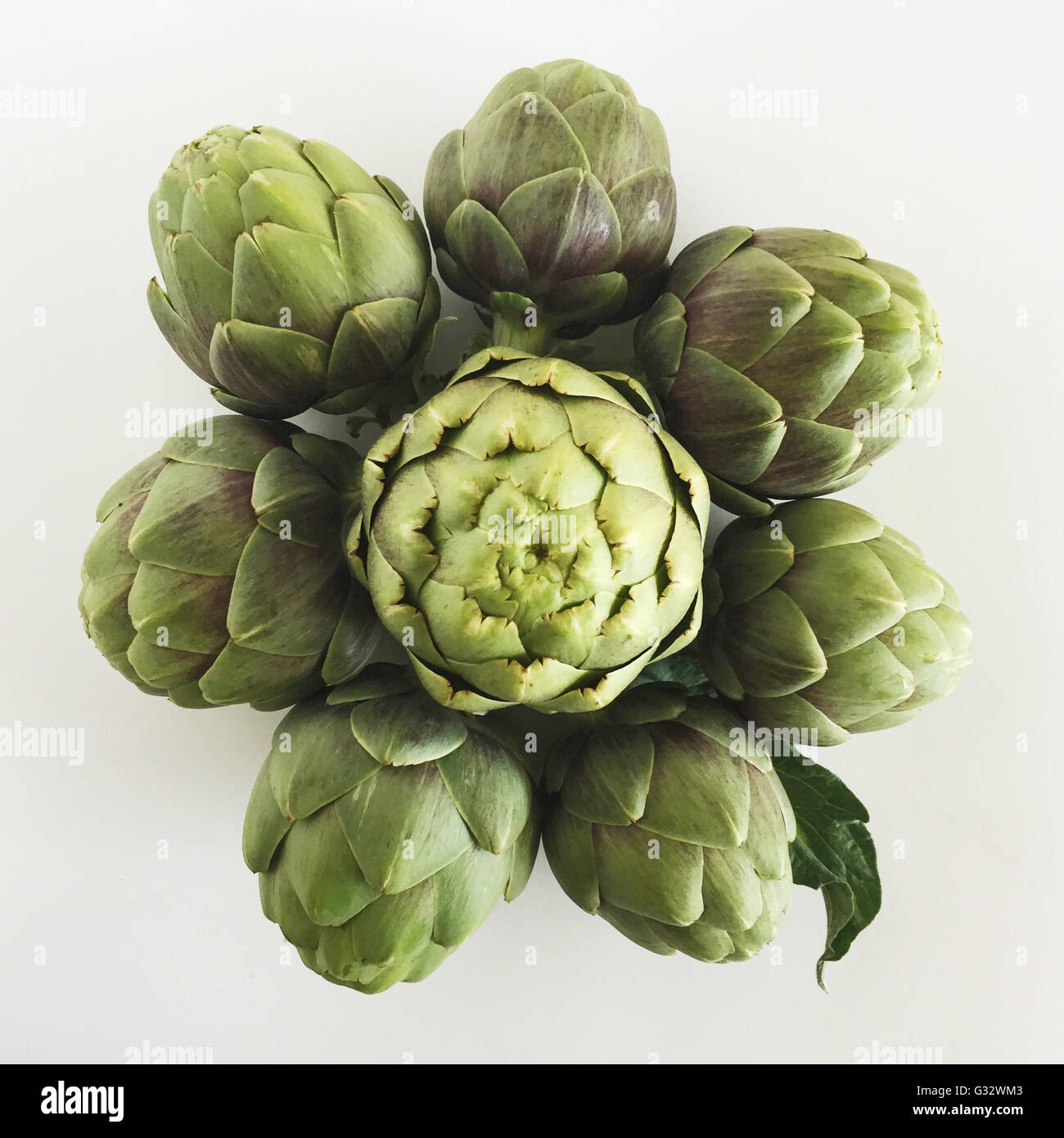 Artichokes in a flower pattern - Stock Image