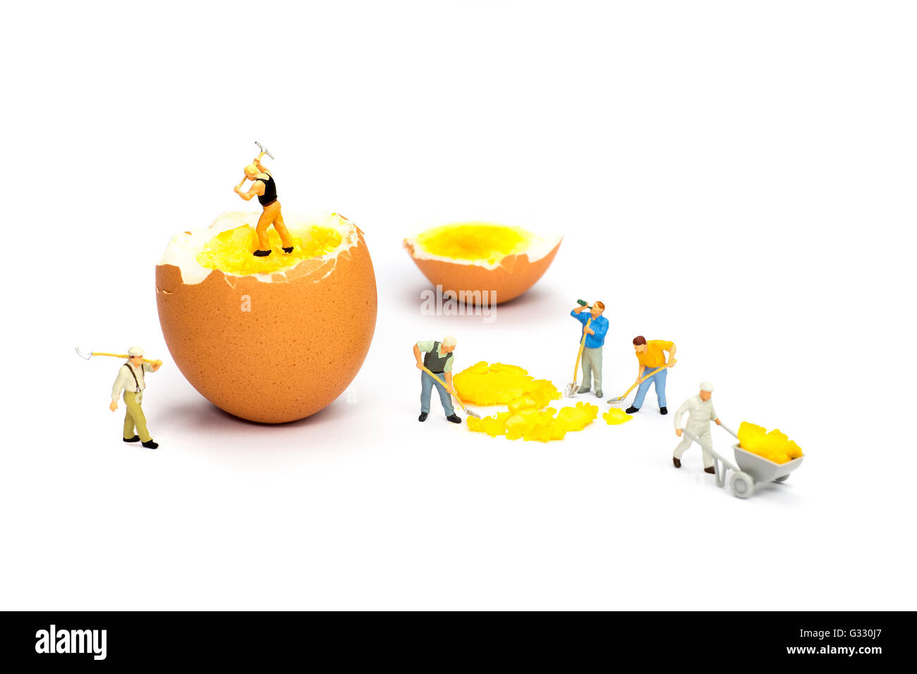 Team of miniature  construction workers figurines transporting chicken egg yolk - Stock Image
