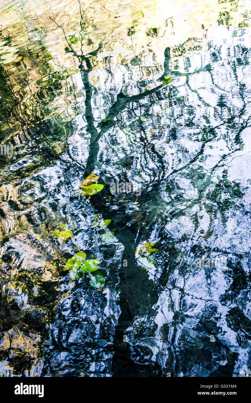 Water reflections, Chapada da Diamantina, Brazil Stock Photo