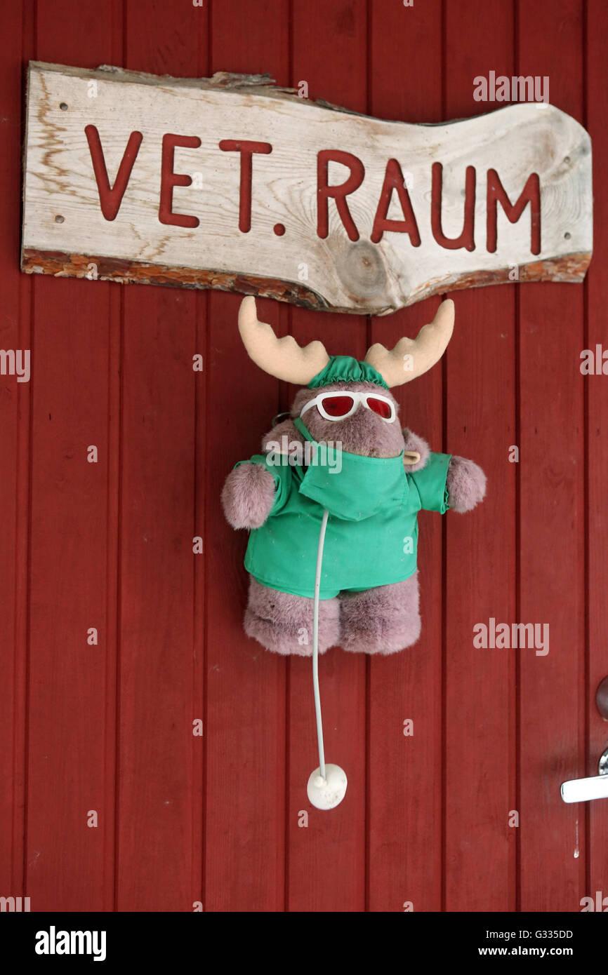 ?k_skero, Finland, elk Pluesch depends on receipt of a veterinary practice - Stock Image