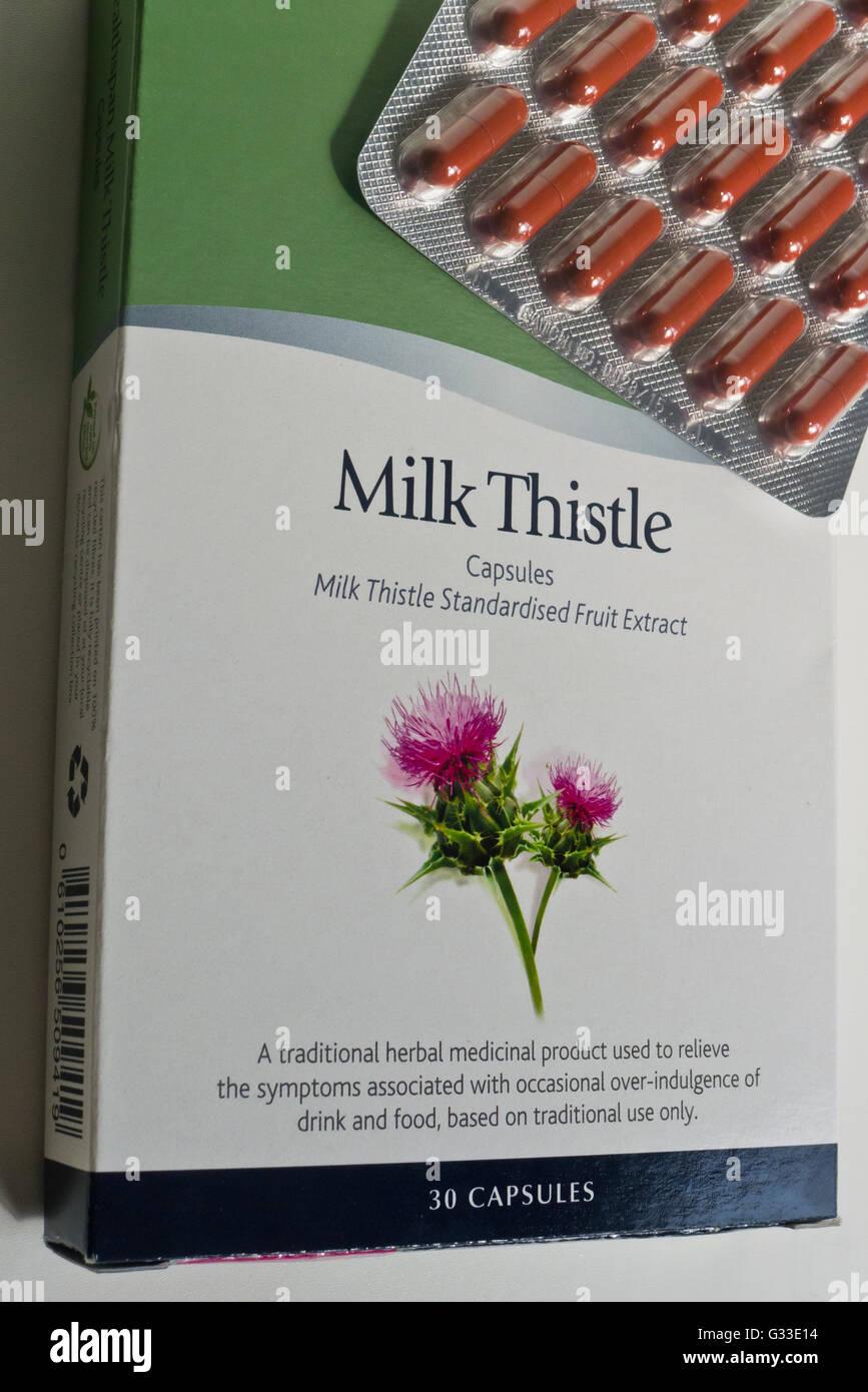 Milk Thistle capsules, herbal supplement. - Stock Image