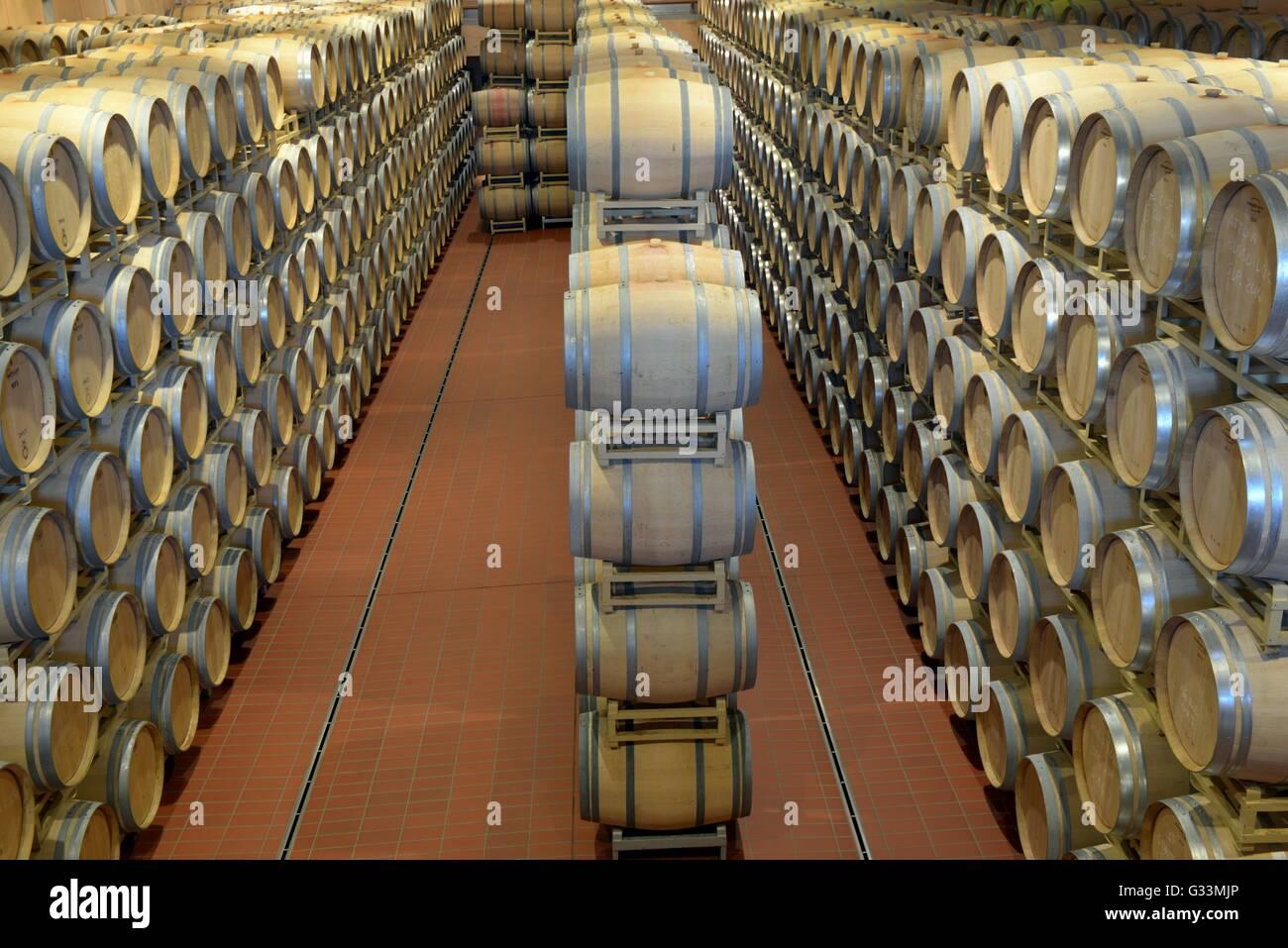 The cellar of Marchesi Antinori in Tenuta Guado al Tasso, Bolgheri, Livorno, Tuscany,Italy, January 09, 2015    - Stock Image