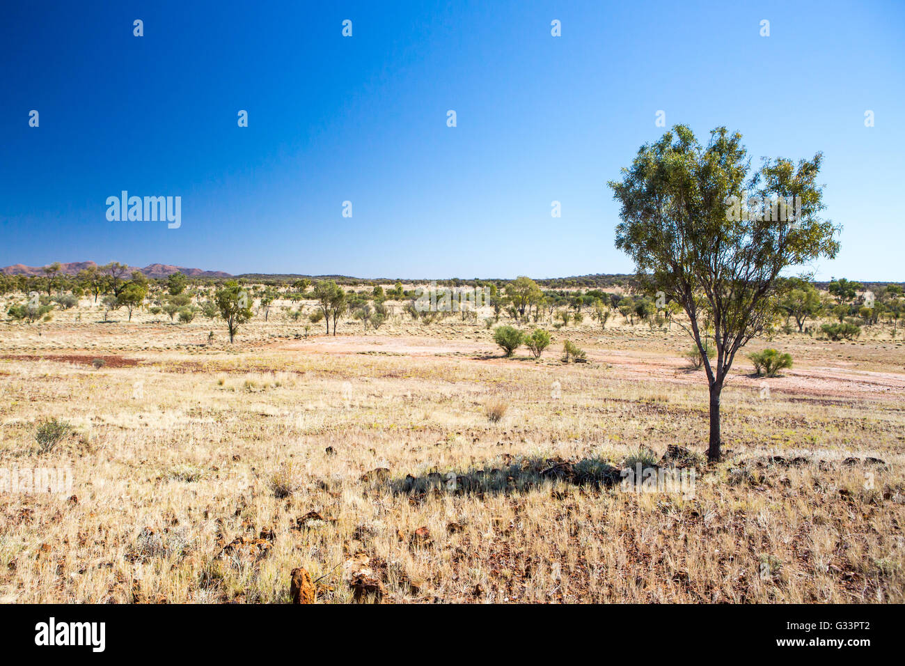 Gem fields near Gemtree in the Northern Territory, Australia - Stock Image