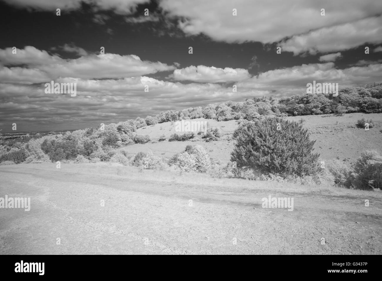 View of box hill surrey uk in black and white using a r72 infra red filter