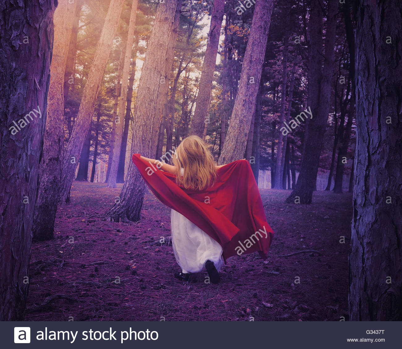 A little girl wearing a white dress and red cape running in the woods with for a surreal fairytale or adventure - Stock Image