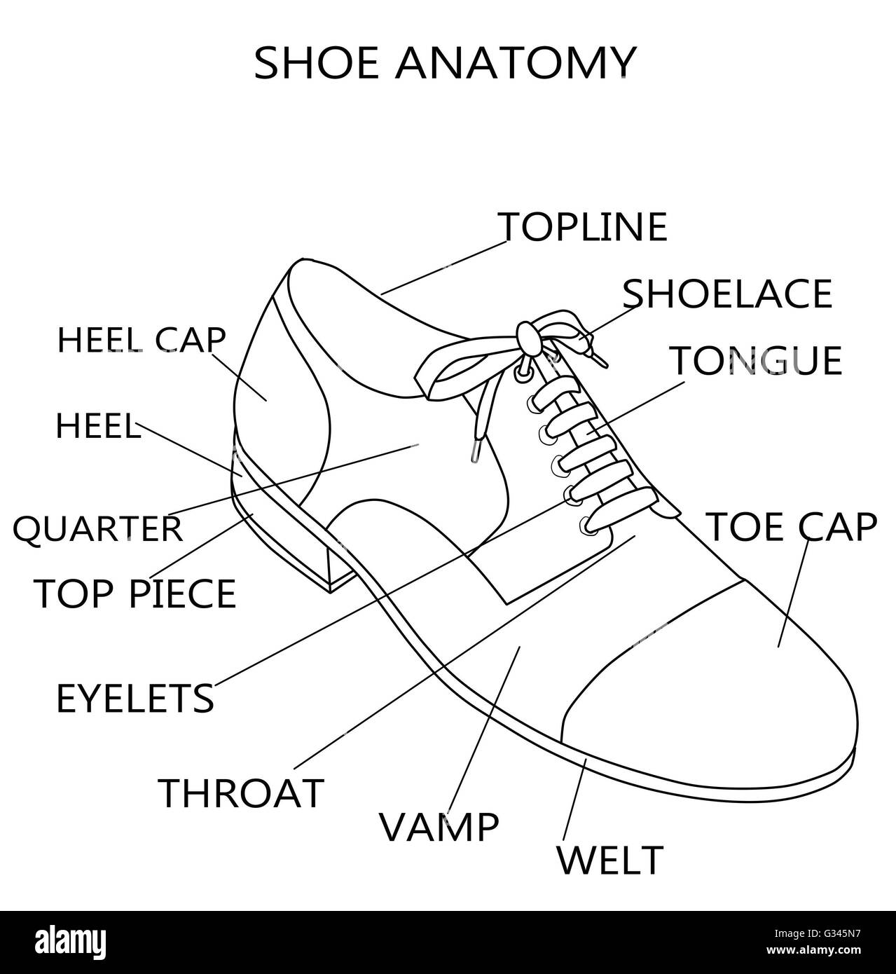 Fashion Illustration - Raster Illustration of the anatomy of a shoe ...