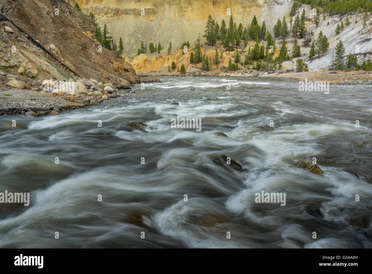 USA, Wyoming, Yellowstone, National Park, UNESCO, World Heritage, Yellowstone River canyon - Stock Image