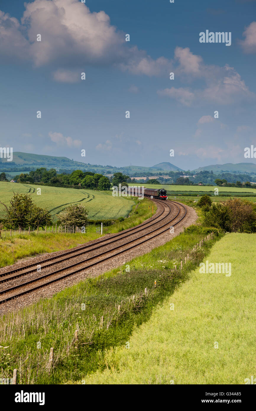 The Flying Scotsman on the Marches Line (Cardiff to Manchester) between Craven Arms And Church Stretton, Shropshire - Stock Image