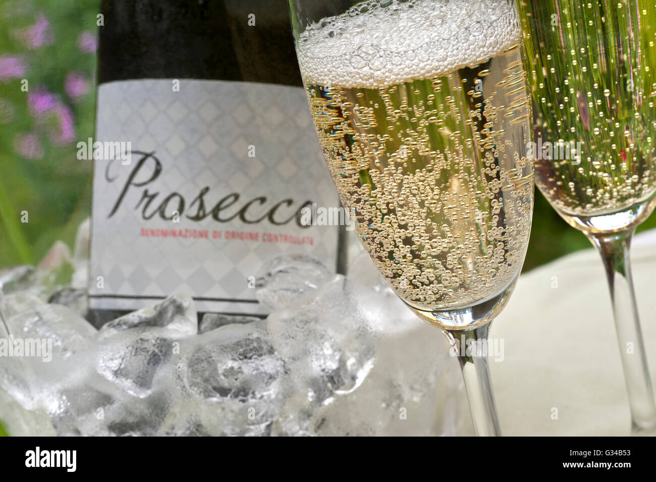 PROSECCO ALFRESCO Close-up on freshly poured glasses of Prosecco with bottle in iced wine cooler  behind on alfresco - Stock Image