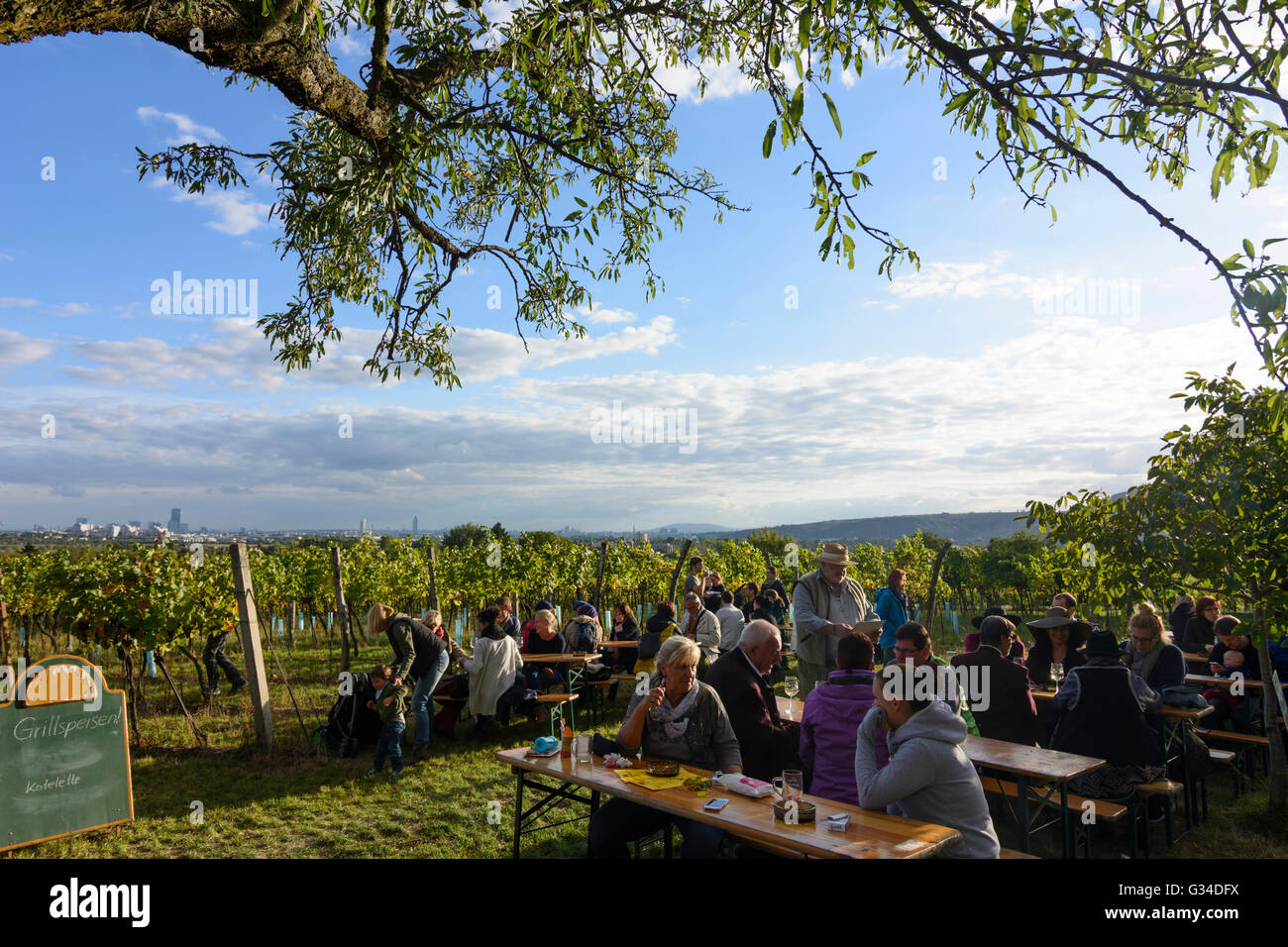 Refreshment Area Wine Bar At Wine Hiking Day In Strebersdorf Stock