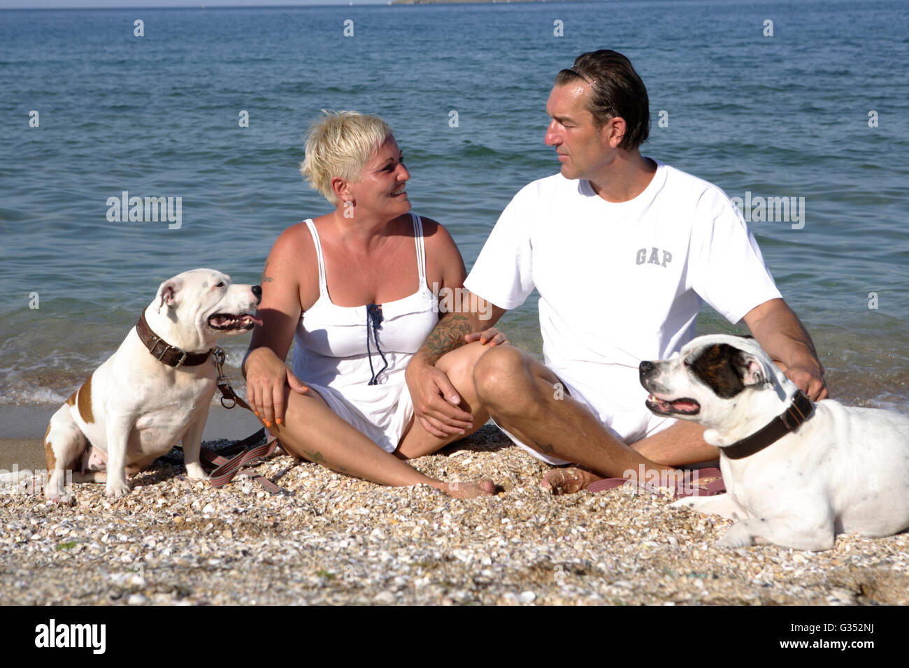 Couple, 41, 50 years, with their dogs, Staffordshire Bull Terriers, on the beach - Stock Image