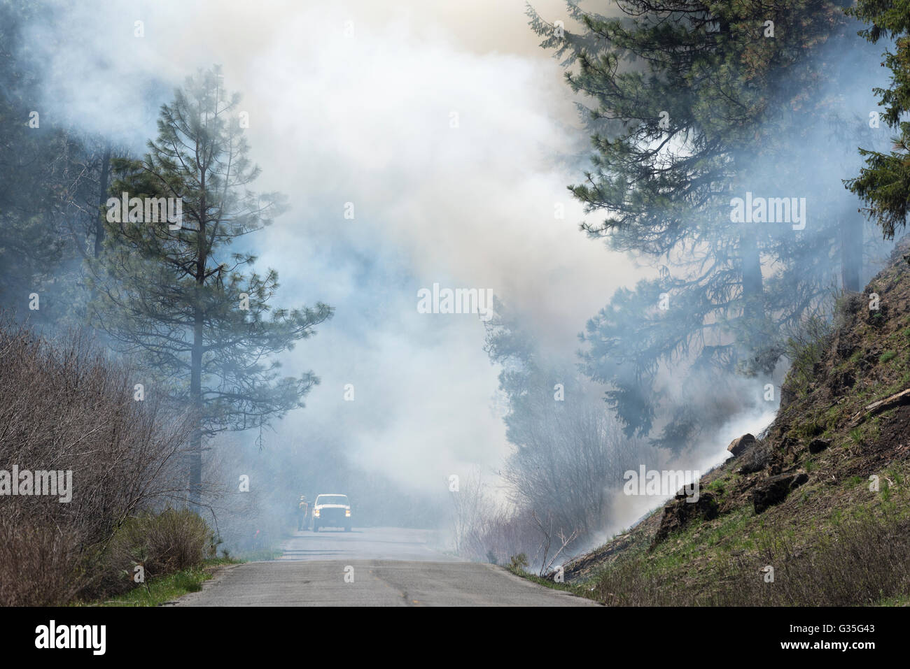 U.S. Forest Service crew monitoring a controlled burn in Oregon's Ochoco Mountains. - Stock Image