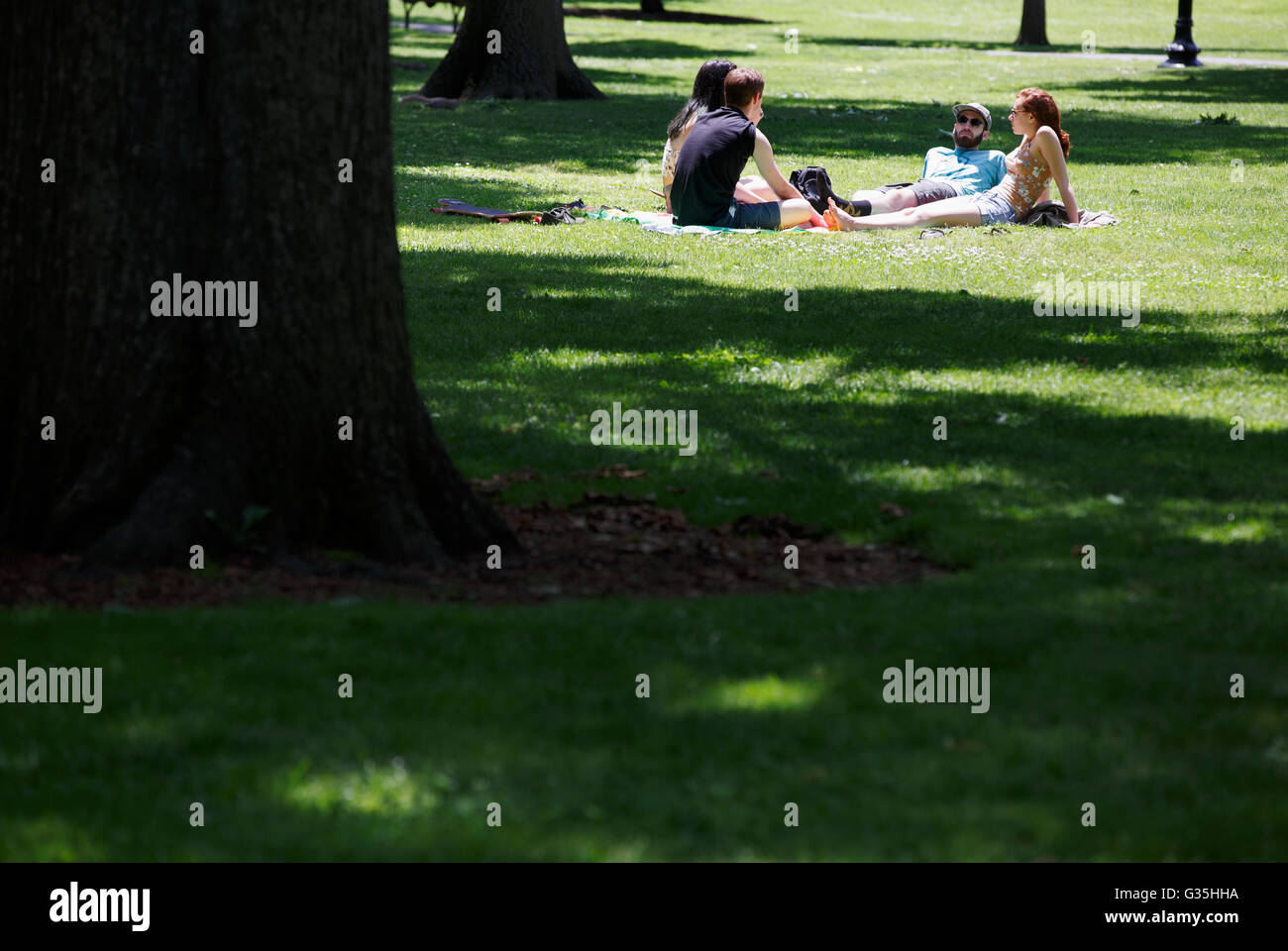 Boston Public Garden - Stock Image
