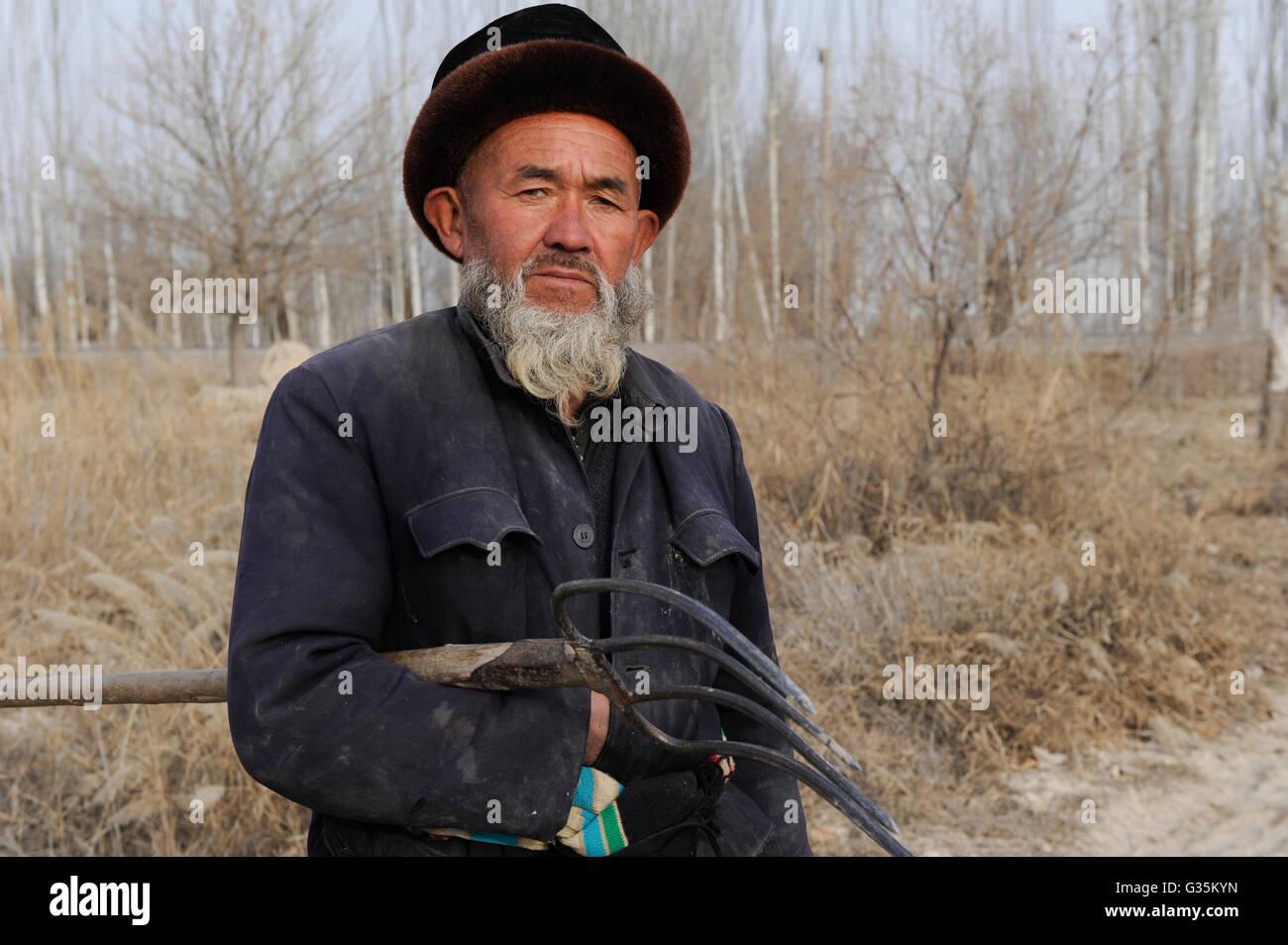 CHINA province Xinjiang Kashgar , uyghur farmer with fork during winter - Stock Image