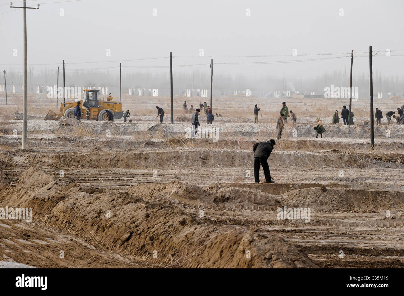 CHINA province Xinjiang, uighur villages around city Kashgar, uyghur worker prepare irrigation canals for a cotton - Stock Image