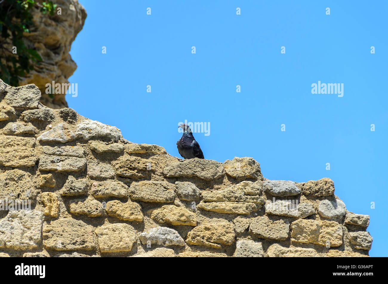 Hauture, site médiéval, Fos sur Mer, Bouches du Rhône, France - Stock Image