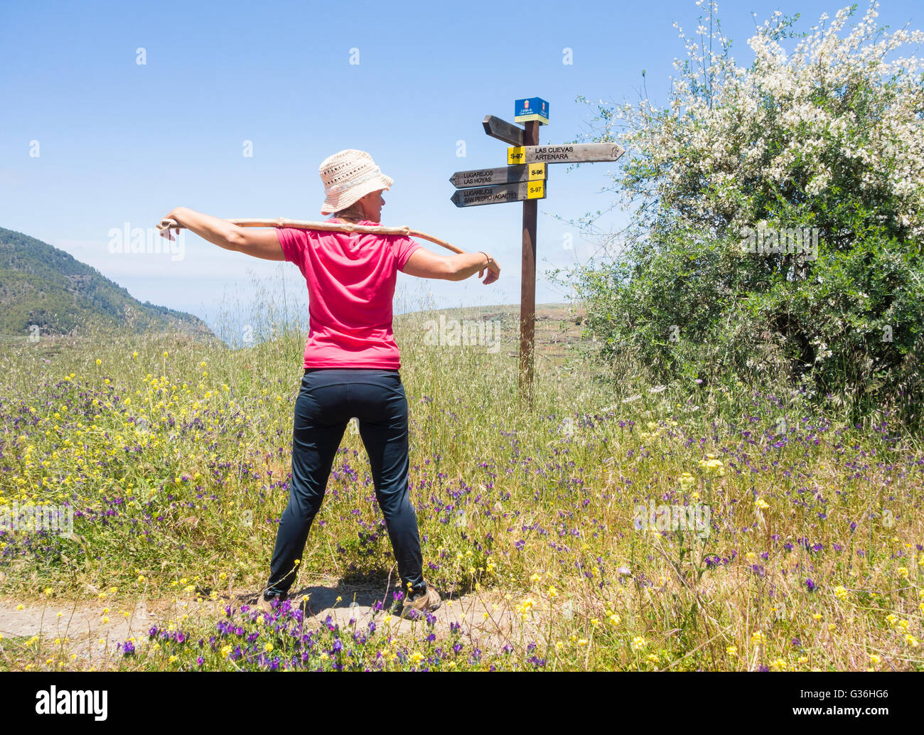 Female hiker on footpath through wildflower meadow in mountains of Gran Canaria. Canary Islands, Spain Stock Photo