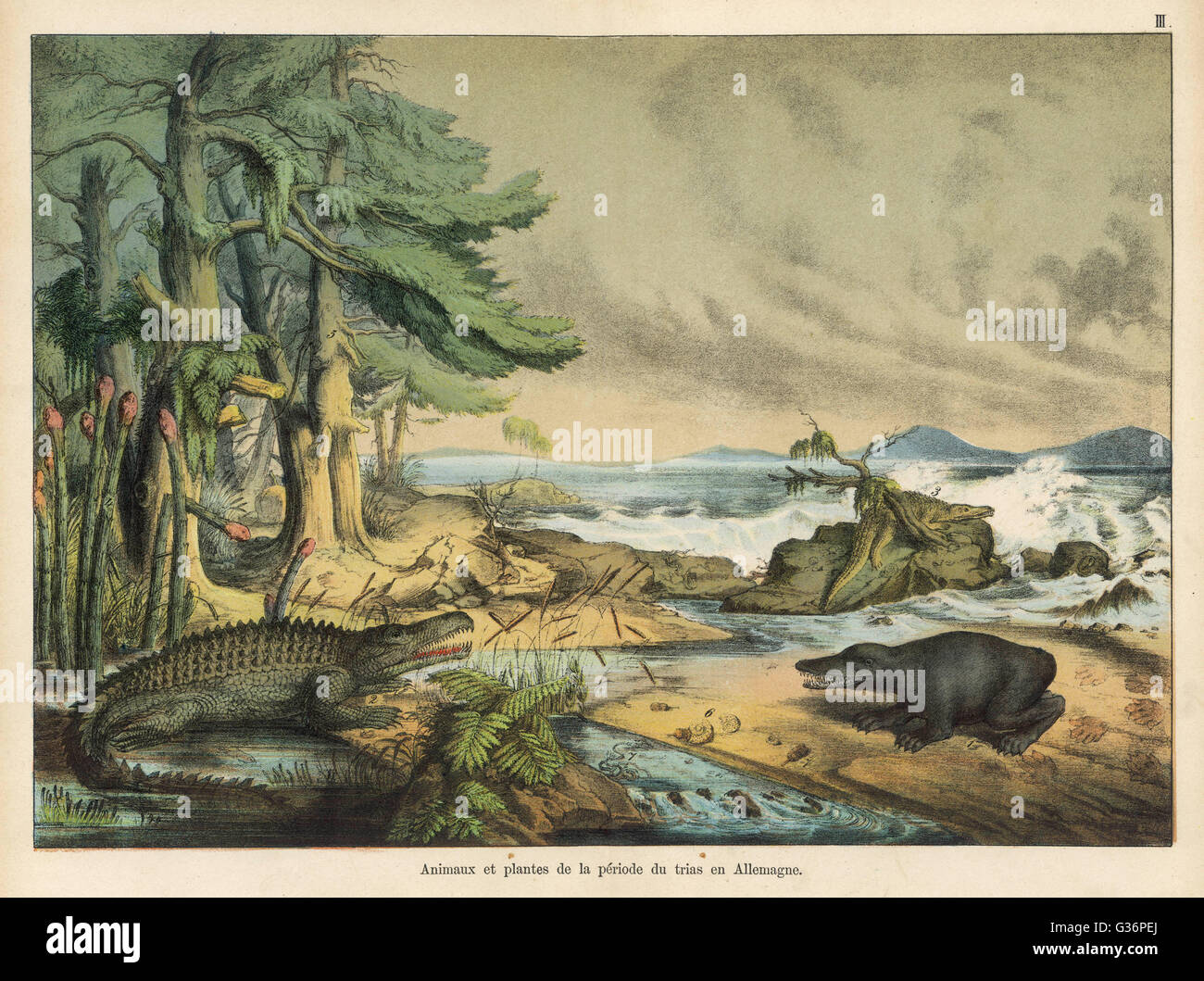 German landscape, with animals, during the Triassic Era.          Date: 245-208 million BC - Stock Image