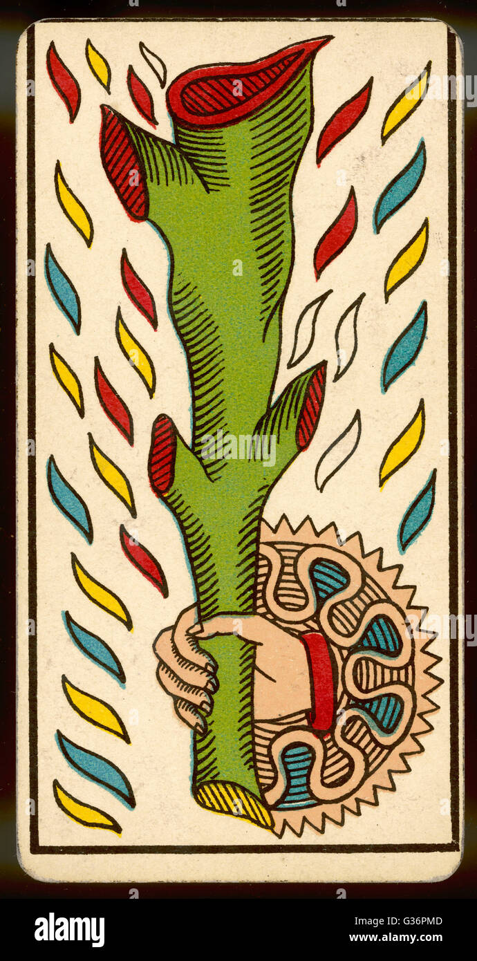 Tarot Card  - As de Baton (Ace of Clubs). - Stock Image