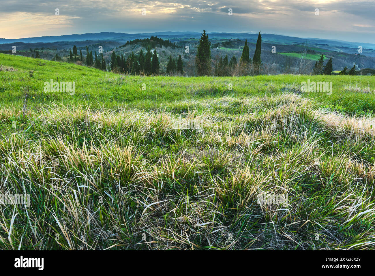 Enchanted landscape with overcast sky - Stock Image
