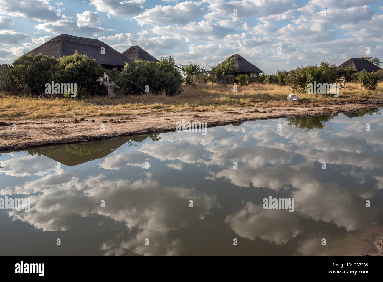 Nehimba Safari Lodge Hwange national Park Zimbabwe Stock Photo