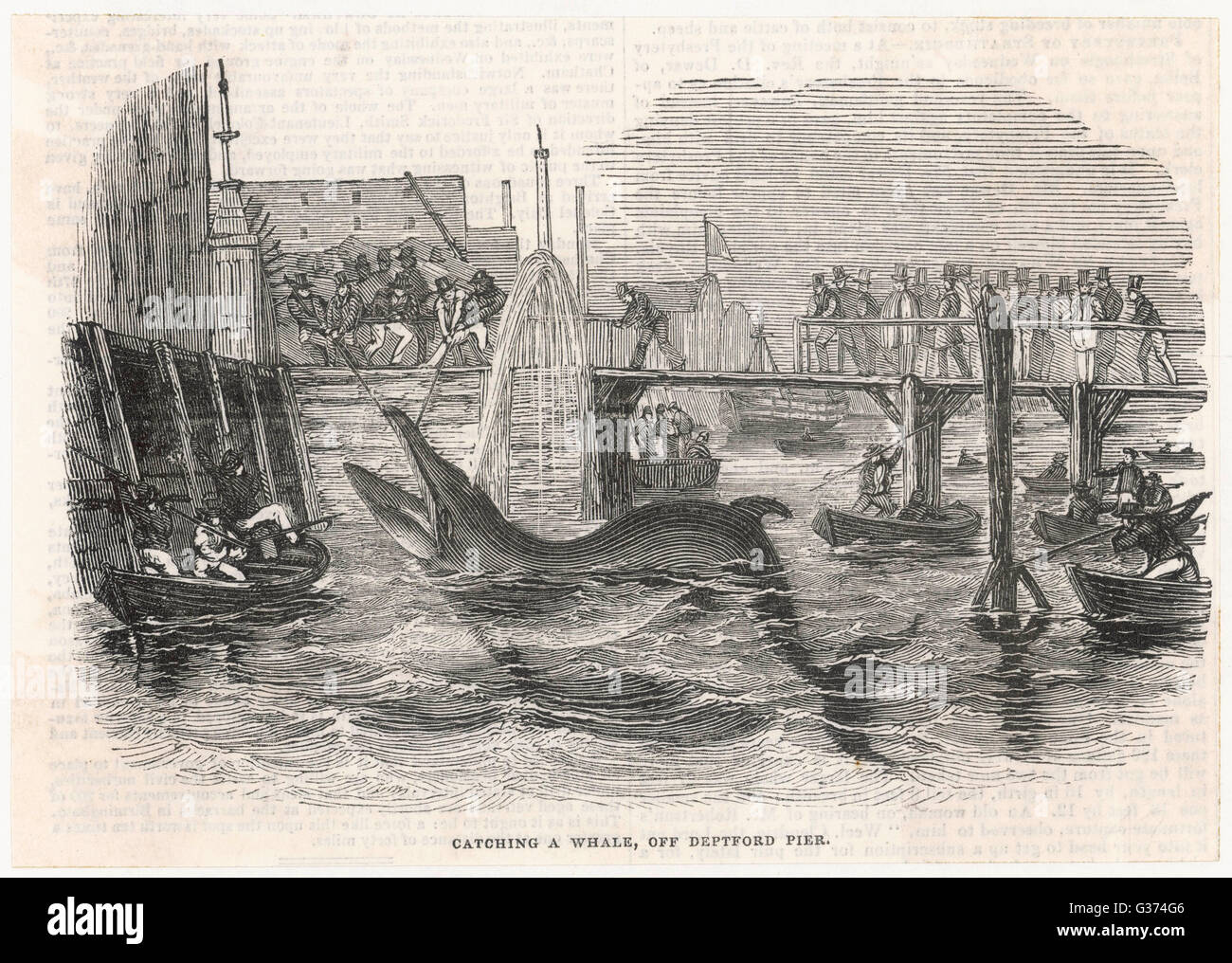 Catching a whale off Deptford  Pier         Date: 1842 Stock Photo