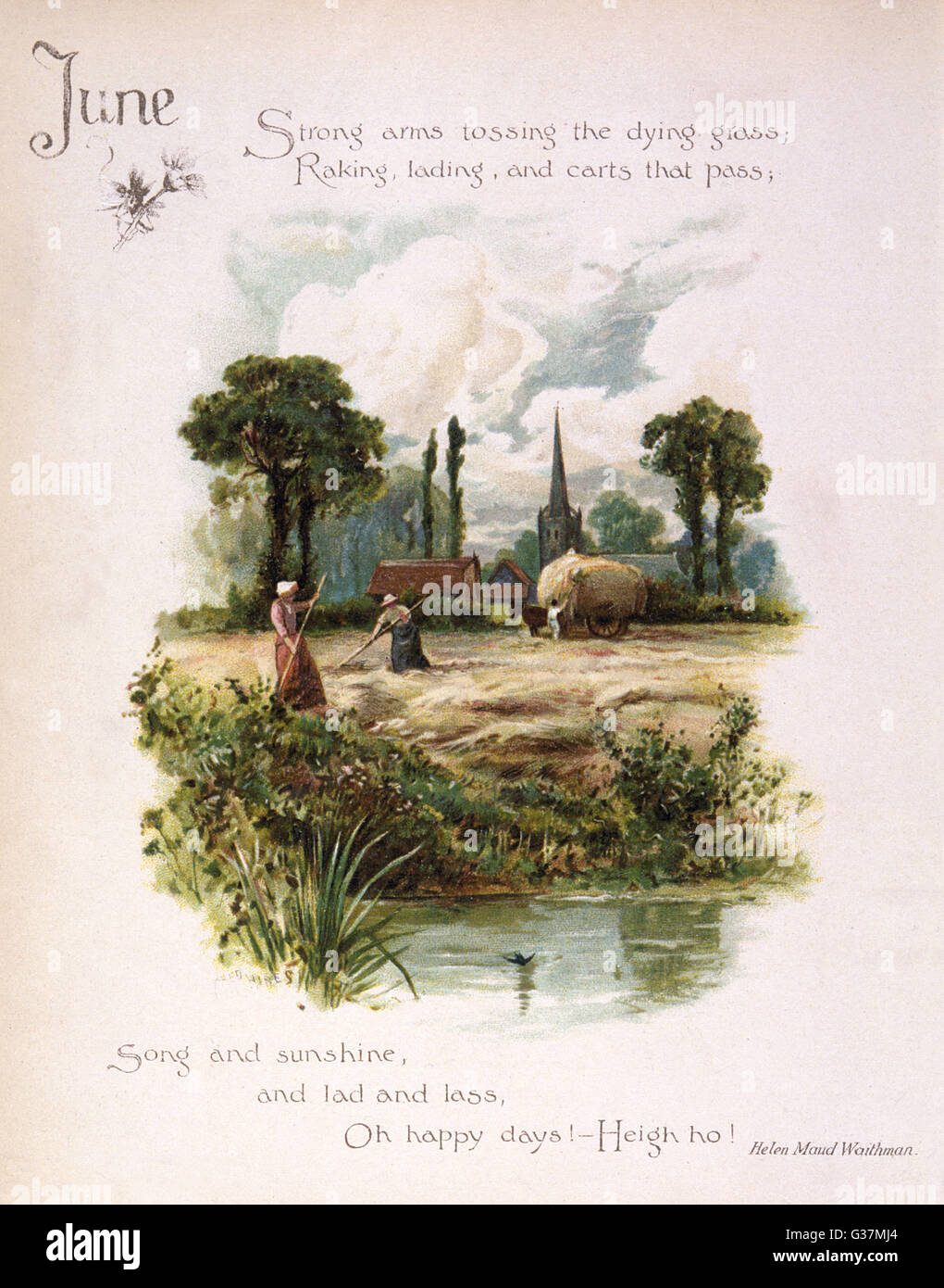 Book illustration -- June, with a haymaking scene.      Date: circa 1880 - Stock Image